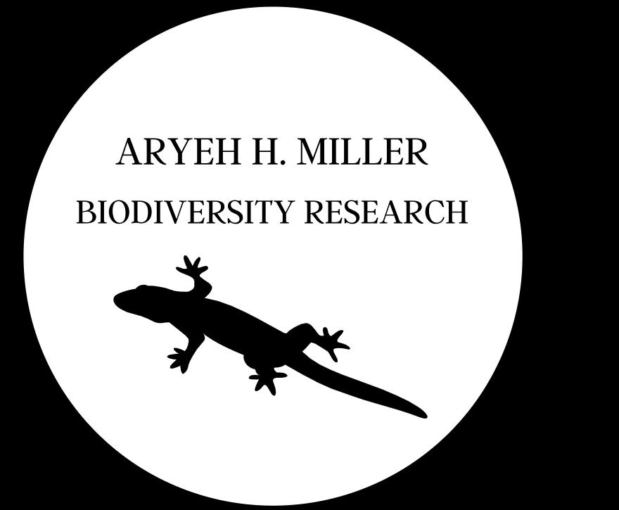 ARYEH H. MILLER